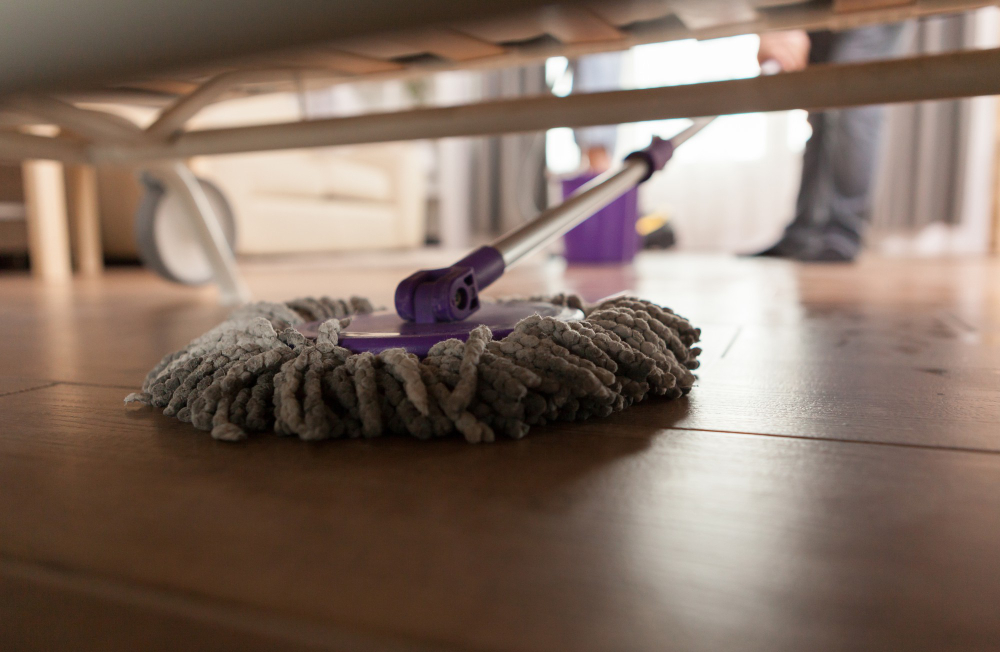 fortnightly-cleaning